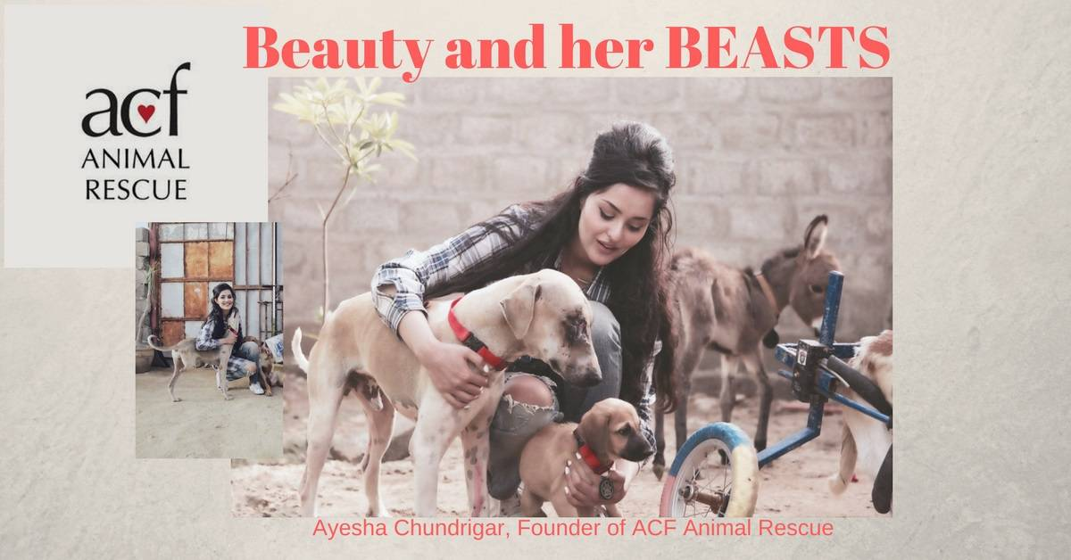 Beauty and her BEASTS, Ayesha Chundrigar SAVES Animals